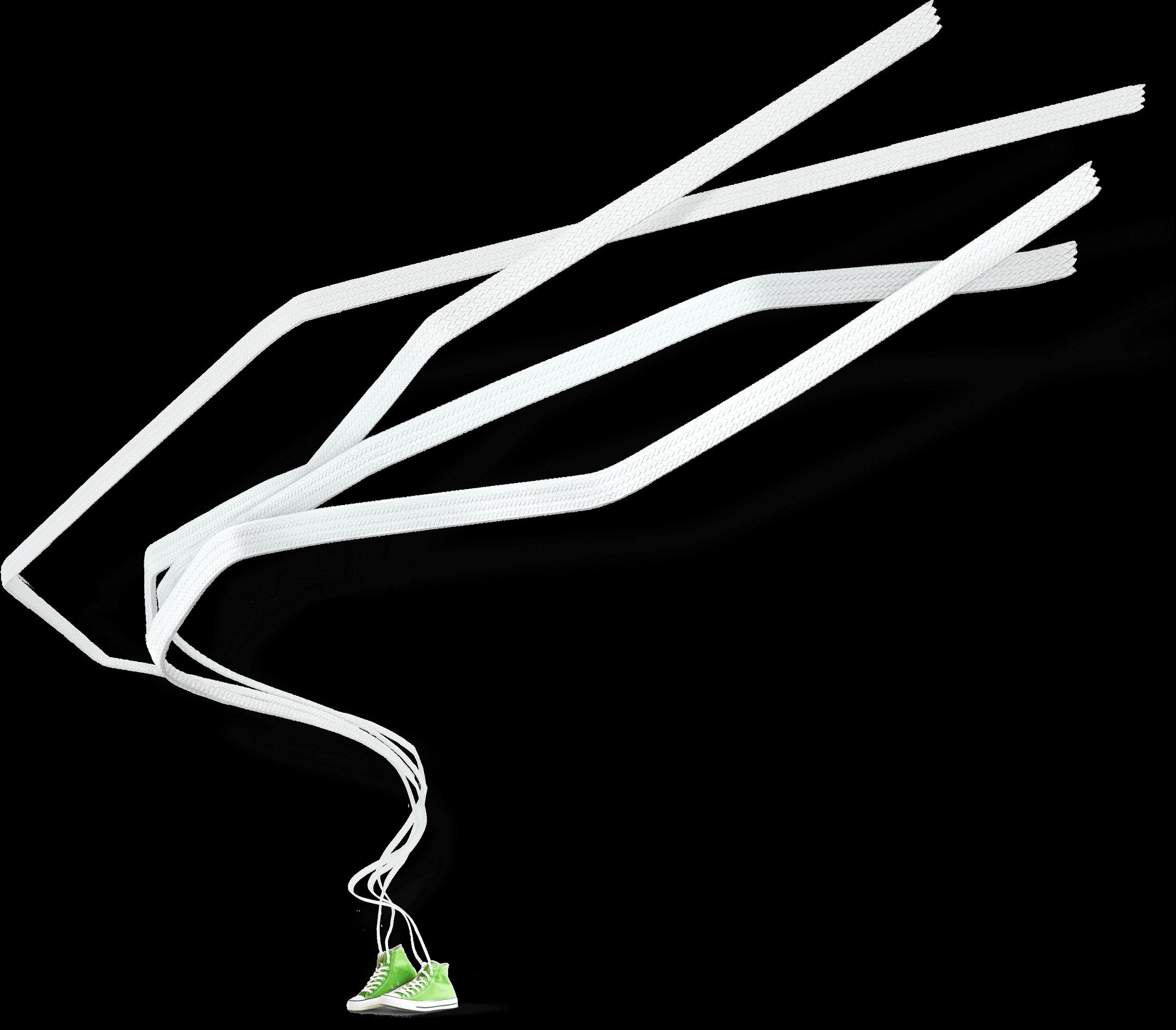 laces image